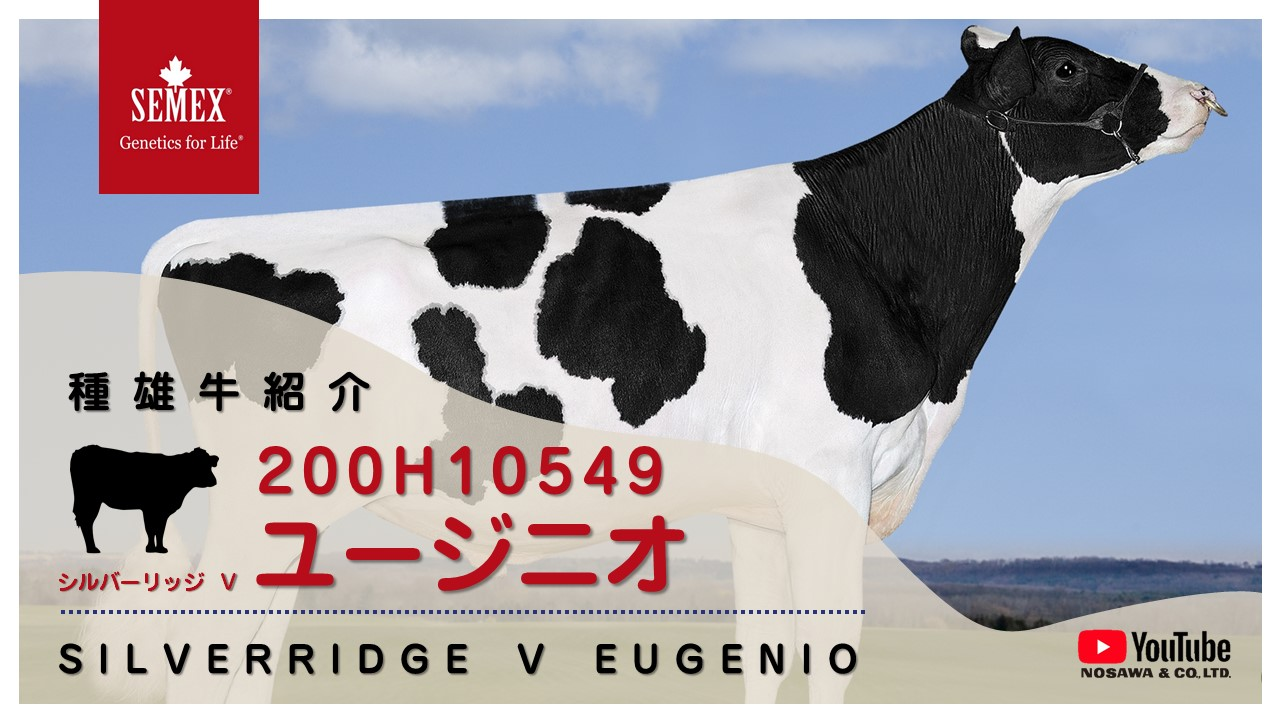 200H10549 ユージニオ.jpg